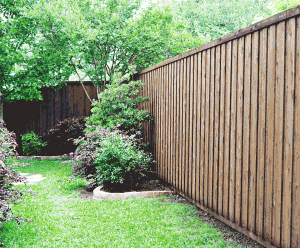 fence staining, custom fence staining