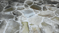 Gallery | Custom Flastone, Stamped or Stained Cement